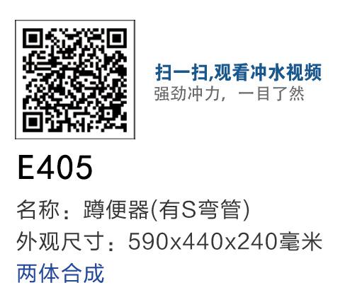 E405.jpg